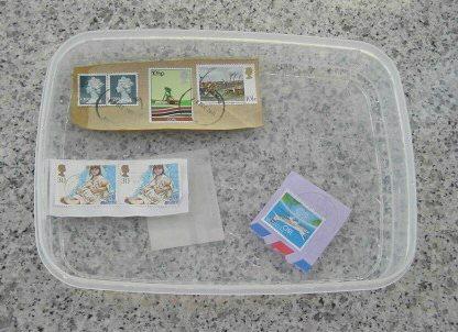 1. 預備一個小膠盒,先放水,後放郵票。約幾分鐘後,讓郵票慢慢分開。